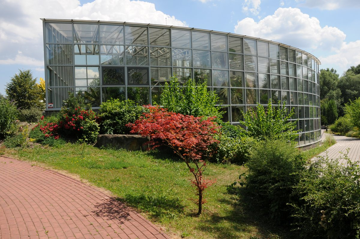 botanical-garden-of-medicinal-plants